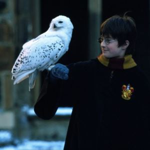 <em>HARRY POTTER AND THE SORCERER'S STONE™</em> (2001)